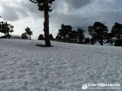 Ruta por el valle de Fuenfría, Siete Picos; sierra de madrid senderismo; rutas por la sierra